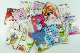 PartyErasers Pack of 18 x owl, flowers and teddy bears assorted Designs Small Notebooks