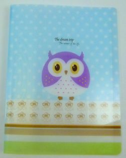 Cute Owl 20 pockets Lightweight A4 Display Book File Folder (Blue Star)