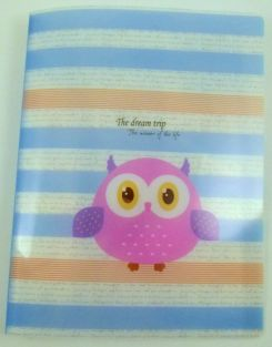 Cute Owl 20 pockets Lightweight A4 Display Book File Folder (Stripy)