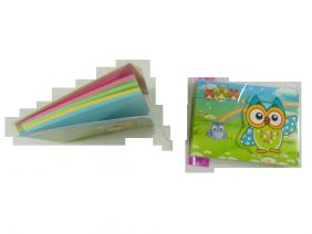Cute Owl Colourful Notepad with Velcro Flap (Big Eye Green Owl)