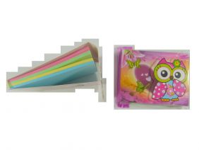Cute Owl Colourful Notepad with Velcro Flap (Big Eye Pink Owl)