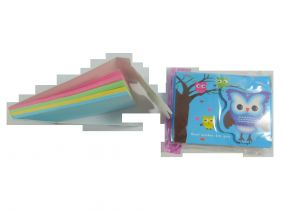 Cute Owl Colourful Notepad with Velcro Flap (Blue Night Owl)