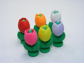 Dream Colourful Tulip Japanese Erasers